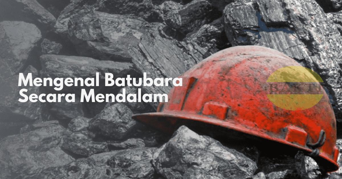 Mengenal Batubara Secara Mendalam